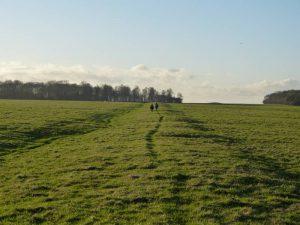 eastern bank of Stonehenge cursus with Oldbury Tours