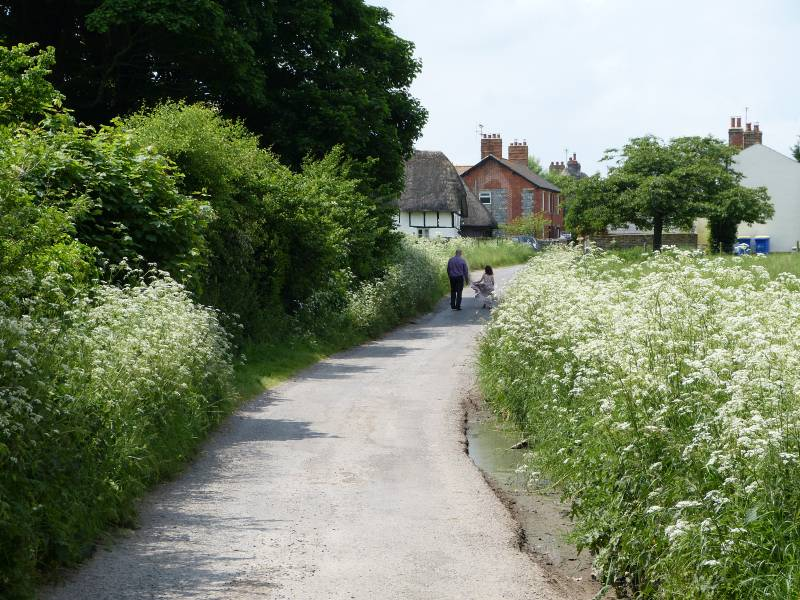 Summer lane in Avebury Village