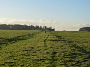 Stonehenge Cursus western section with Oldbury Tours