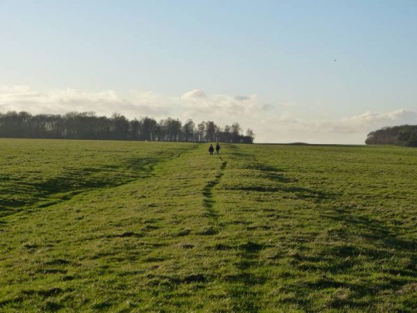 Avebury and Stonehenge guided tours - the Stonehenge Cursus eastern bank, Wiltshire, UK