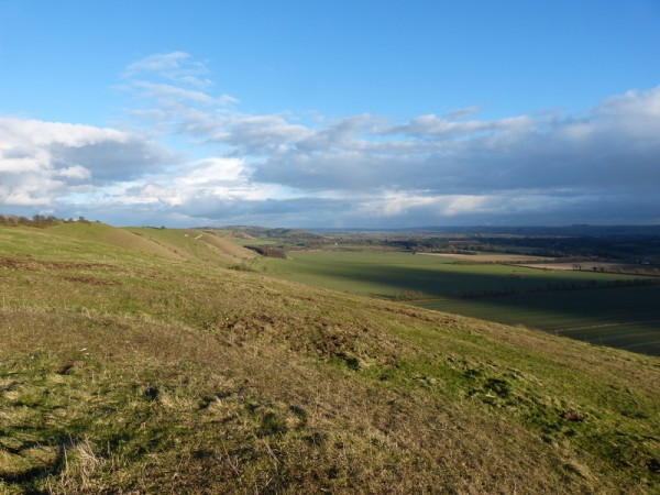 The northern escarpment of the Pewsey Vale