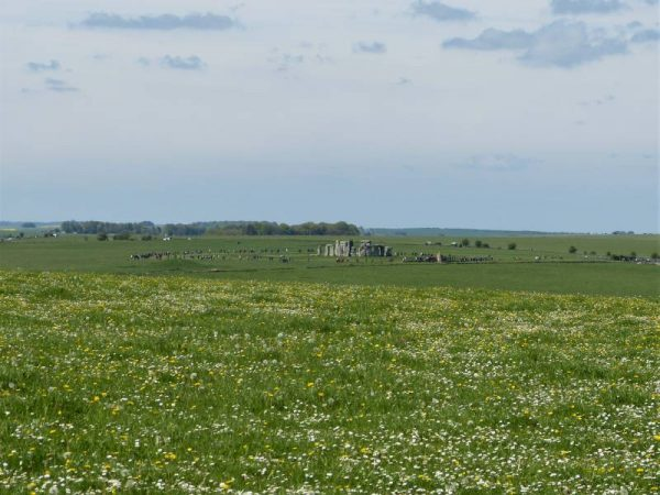 Stonehenge and Avebury guided tours - looking across meadows of wild flowers to Stonhenge, Wiltshire, UK