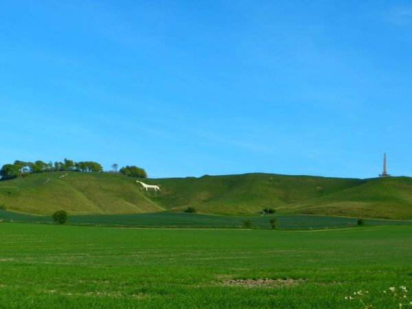 Stonehenge private guided tours - Cherhill Down and White Horse, Wiltshire