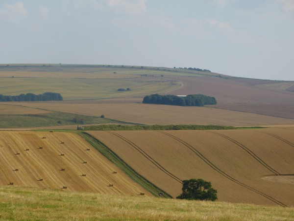 West Kennet Long Barrow in the middle distance