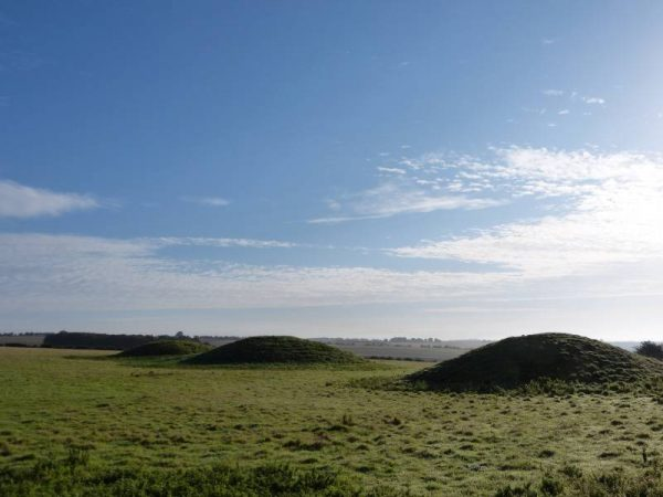 Stonehenge and Avebury Tours - Bronze Age round barrows in early morning sunshine