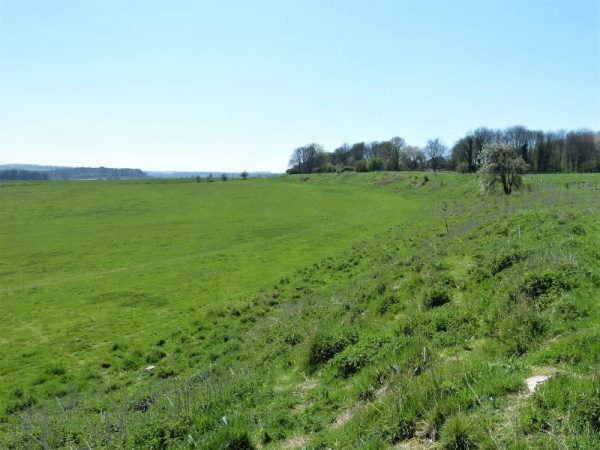 Avebury private guide - Durrington Walls with Oldbury Tours