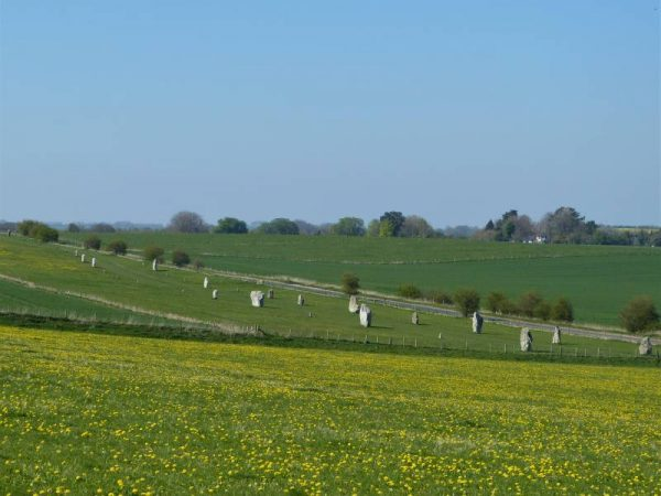 Avebury Private Guide - at West Kennet Avenue with Oldbury Tours