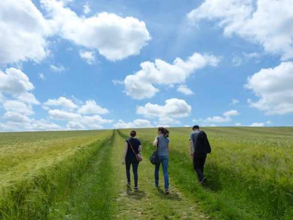 Avebury Private Guide - walking to West Kennet Long Barrow with Oldbury Tours